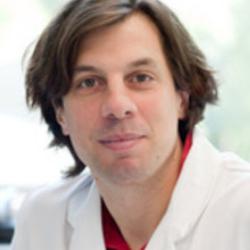 Professor Hauke Busch