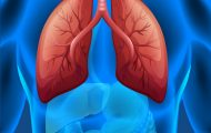 Native American Ancestry Linked To Increased EGFR Mutations In Latin American Patients With Lung Cancer