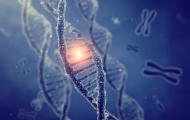 Cancer Genomics ONLINE