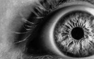 Large study reveals 127 glaucoma genes