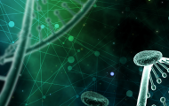 Single Cell & Spatial Omics ONLINE – June Series