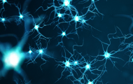 Reimagine neuroscience with single cell and spatial multiomics