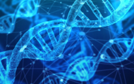 Precision Oncology ONLINE – 2021 Edition