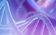 Omics in Drug Discovery ONLINE